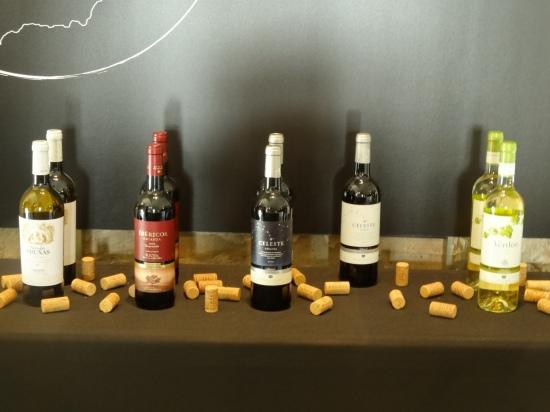 Selección de vinos de Bodegas Torres