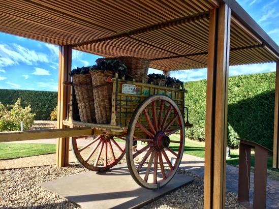 Pagos del Rey Museo del Vino