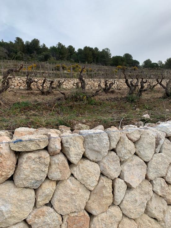 Muro de piedra seca en los viñedos de Albet i Noya